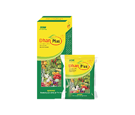 Dhan Plus – FOLIAR APPLICATION